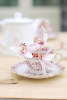 time for tea,in an orchid designed teacup
