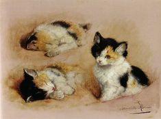 Studies of an awakening kitten by Henriette Ronner-Knip. Image courtesy of Wiki Commons