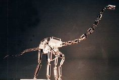 A metal dinosaur armature Stop Motion Armature, Puppet Tutorial, Drag, King Kong, Animal Drawings, Metal Art, Puppets, Wonders Of The World, Monsters