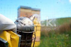 Beekeeper or Apiarist's  Smoker royalty-free stock photo
