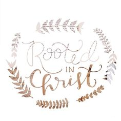 Colossians 2:7 rooted and built up in Him and established in the faith, as you have been taught, abounding in it with thanksgiving.