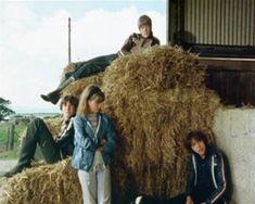 Julian, Dick, Anne und George im Heu