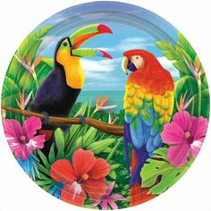 Hawaiian Tropics Dessert Plates count) Description: Have your dessert in a tropical island paradise! Package includes 8 paper dessert plates with a tropical bird scene. Tropical Colors, Tropical Art, Tropical Birds, Hawaiian Tropic, Hawaiian Art, Colorful Parrots, Colorful Animals, Owl Canvas, Free Printable Art