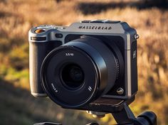 Medium-format meets the modern age: Hasselblad X1D-50c  shooting experience