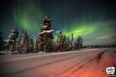 Aurora borealis showed up again in Kemijärvi region, Lapland, Finland. Kola Peninsula, Northen Lights, Lapland Finland, Winter Scenery, Aurora Borealis, Milky Way, Planet Earth, Arctic, Norway