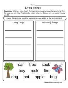 How to teach Living Things Using Characteristics Living Things Worksheet - Sort, students determine which objects are living and non-living things by sorting them into two categories. Determining what is living… Worksheets For Class 1, Social Studies Worksheets, English Grammar Worksheets, Science Worksheets, Science Curriculum, Science Classroom, Kindergarten Worksheets, Summer Worksheets, Reading Worksheets