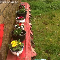 Vasi e fioriere riciclando vecchi contenitori