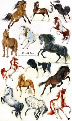 Horse Drawings, Cute Animal Drawings, Seven Horses Painting, Spirit The Horse, Cat Drawing Tutorial, Mystical Animals, Pokemon Eevee, All The Pretty Horses, Cute Little Animals
