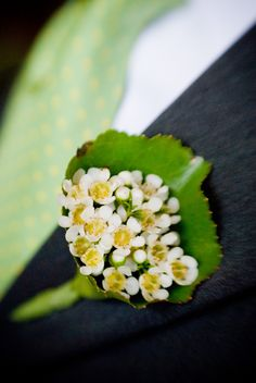 boutonniere of waxflower surrounded by galax leaf wedding flower boutonniere, groom boutonniere, groom flowers, add pic source on comment and we will update it. www.myfloweraffair.com can create this beautiful wedding flower look.