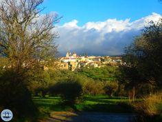 information-about-a-holiday-to-Crete-greece - Zorbas Island apartments in Kokkini Hani, Crete Greece 2020 Crete Greece, Hani, Mountain Range, Beautiful Beaches, Apartments, Golf Courses, Island, Holidays, Landscape