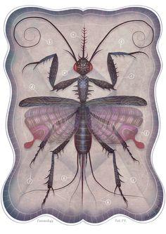 """Entomology Volume II"" by Vladimir Stankovic"