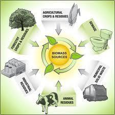 BIOMASS CONVERSION TO FUEL | Green Mechanic http://pakwindturbine.blogspot.com/2013/06/biomass-conversion-to-fuel.html
