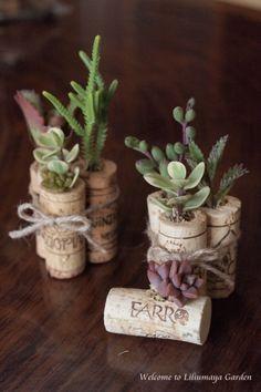 Succulent corks 2