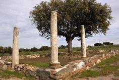 Villa romana de Monroy. Fue una rica hacienda agrícola con residencia en la que destacan mosaicos datados en el siglo IV d.C.