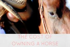 The cost of owning a horse - via Hoofbeats and Ink