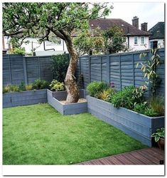Checked back on a recent garden makeover project for a young couple in Streatham. - Checked back on a recent garden makeover project for a young couple in Streatham Hill yesterday.