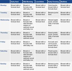 Meal planner 6-7 months