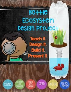 ***Pinning this-- interested in doing this 2015-2016!!  Engage your students with this step-by-step Bottle Ecosystem Design Project. Teach it!Lesson plans will guide you through scaffolding students with classroom friendly fact sheets that will motivate students to infer as they decide what type of habitat will meet the needs of the insect they select.