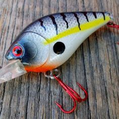 Custom RC 1.5 Fishing Lure Deep Diver Crankbait Bass, Pike Lures