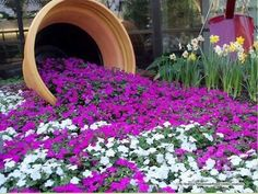 Spilled Flower Pot Ideas – Spilled flower pots are a whimsical and humorous trend in garden design. This is an easy concept to use in any backyard garden, and requires only a little thought and creativity. Flower Pot Garden, Beautiful Flowers, Flower Landscape, Outdoor Flower Planters, Backyard Garden Design, Garden Design, Plants, Backyard Garden, Backyard Landscaping