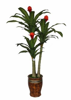 Imitated-Tropical-Plant-Dracaena-Tree-Enjoyable-Decorative-Bromeliad-