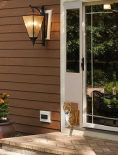 Power Pet Doggie Door Automatically Opens For Your Dog Only -  #dogs #pets #security