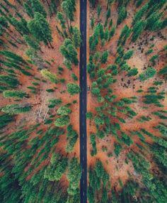 OREGON (STATI UNITI) – Dal punto di vista di un drone il paesaggio cambia totalmente forma. Ecco, per esempio, un bosco dell'Oregon visto dalla prospettiva aerea. Specie nei giorni del foliage.