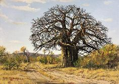 Errol Norbury South African Artist is best known for his detailed oil landscape and seascape paintings. Online Painting, Painting Classes, Canvas Online, South African Artists, Beautiful Forest, Oil Painting On Canvas, Oil Paintings, Tree Forest, Fantastic Art