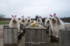 Waiting for Easter breakfast