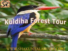 ShakuntalaNivas offers Kuldiha tourism tours on wildlife sanctuary tour in Orissa, Kuldiha forest travel package, book your weekend sanctuaries trip from Panchalingeswar to Kuldiha, find best hotels, cottages, lodge with delicious foods.@http:/shakuntalanivas.com/kuldhia.html