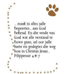 Afrikaans, Dog Tags, Dog Tag Necklace, Jewelry, Jewlery, Bijoux, Schmuck, Jewerly, Jewels