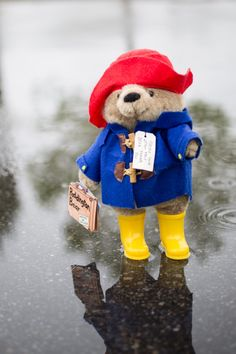 Welcome to the official Paddington website. This is your first port of call for finding out everything relating to the famous bear, his author Michael Bond and the movie. Oso Paddington, Harrods Bear, Yorkshire, Super Cute Animals, Cute Polymer Clay, Beanie Boos, Pooh Bear, Big Bear, April Showers