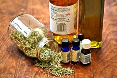 Herbal Home Remedies for Lice