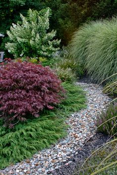 A simple composition that could work nearly anywhere.   Amy Martin Landscape Design