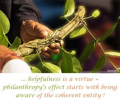 ... #helpfulness is a virtue ~ philanthropy's effect starts with being aware of the coherent entity !