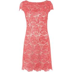 Eliza J Lace guipure cap sleeve dress ($150) ❤ liked on Polyvore featuring dresses, coral, sale, lace shift dress, eliza j dresses, red lace dress, knee length cocktail dresses and red shift dress