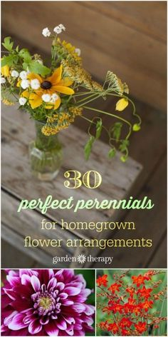 Bouquet Gardens: The Best Cutting Flowers + Growing & Harvesting Tips : 30 perfect perennials to grow in your home cutting garden Growing Flowers, Cut Flowers, Planting Flowers, Fall Flowers, Growing Plants, Cut Flower Garden, Flower Gardening, Cut Garden, Flower Landscape