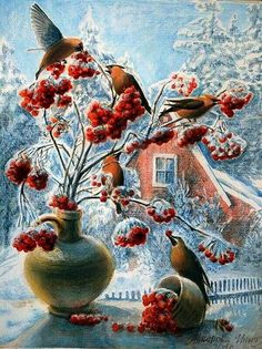 Winter birds: