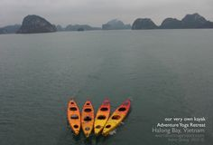A boat is safe in the harbor. But this is not the purpose of a boat. Ha Long Bay, Seven Wonders, Natural Wonders, Karma, Purpose, Exotic, Boat, Adventure, Pictures