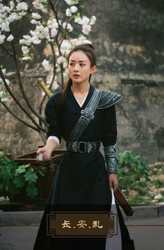Zhao Li ying in Princess Agents Princess Agents, Mode Steampunk, Zhao Li Ying, China Girl, Fantasy Costumes, Chinese Clothing, Chinese Actress, Chinese Culture, Traditional Dresses