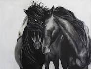 Photo of horses - Robert Dutesco