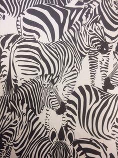 zebra tapéta