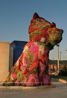Puppy (Jeff Koons) Bilbao