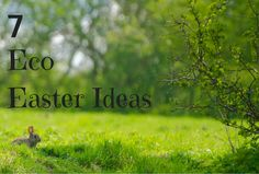 A Green and Rosie Life: Weekly Green Tips #46 - Eco-Easter Ideas