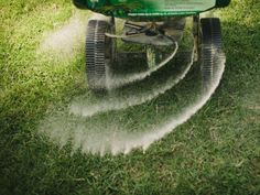 See these lawn fertilizing steps to make sure your grass gets the right nutrients and stays green and healthy.