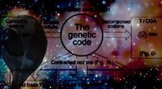 Portal 11 Acuario: Hay un código extraterrestre en nuestros genes...