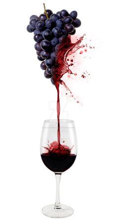 0 grapevines exploding in wine - raisins explosant en vin Art Du Vin, Vides, Types Of Wine, Wine Cheese, In Vino Veritas, Sauvignon Blanc, Wine Time, Wine And Beer, Wine And Spirits