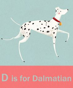 D is for Dalmatian illustrated by Emma Block.