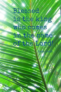 Scripture Quote: Luk