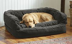 Our Deep Dish Lounger memory foam dog bed is the ultimate in canine orthopedic comfort. orvis.co.uk